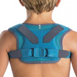 Cuello tronco y hombro