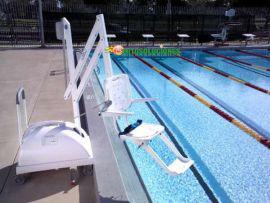 Grúa acceso piscina MOVIL PAL